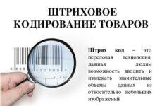 Кодирование товаров: понятие, цели, характеристики кодов. Способы кодирования товаров