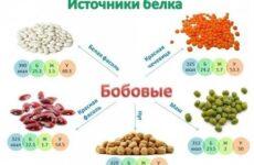 Химический состав продовольственных товаров. Белки