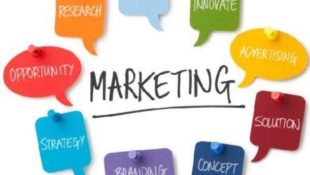 Стандартизация в практике маркетинга