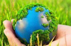 Стандартизация и экология