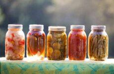 Способы консервирования, основанные на процессе абиоза