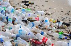 Экологические проблемы утилизации упаковки