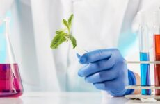 Химические и биохимические методы