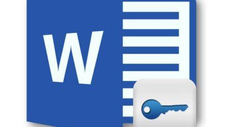Возможности работы с Windows Word 2020