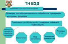 Характеристика примечаний к классификационным группам ТН ВЭД и пунктов исключений в примечаниях