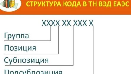 Кодовая система ТН ВЭД: назначение, построение, характеристика кода ТН ВЭД