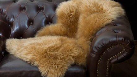 Овчина меховая: сырье, основные виды, особенности сортировки
