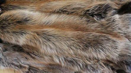 Товароведная характеристика пушного полуфабриката: лиса, норка, белка